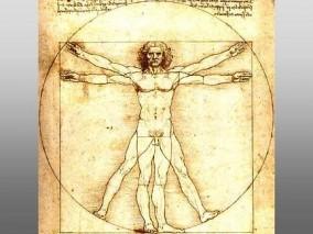 curiozitati ale corpului uman da vinci