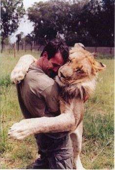convietuirea dintre animalele salbatice si oameni